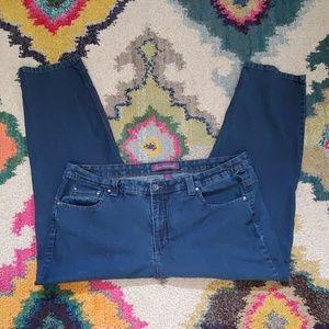 Gloria Vanderbilt Sarabelle Style Indigo Jeans 20W